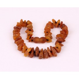 5 items (25 cm) Amber necklaces for dogs